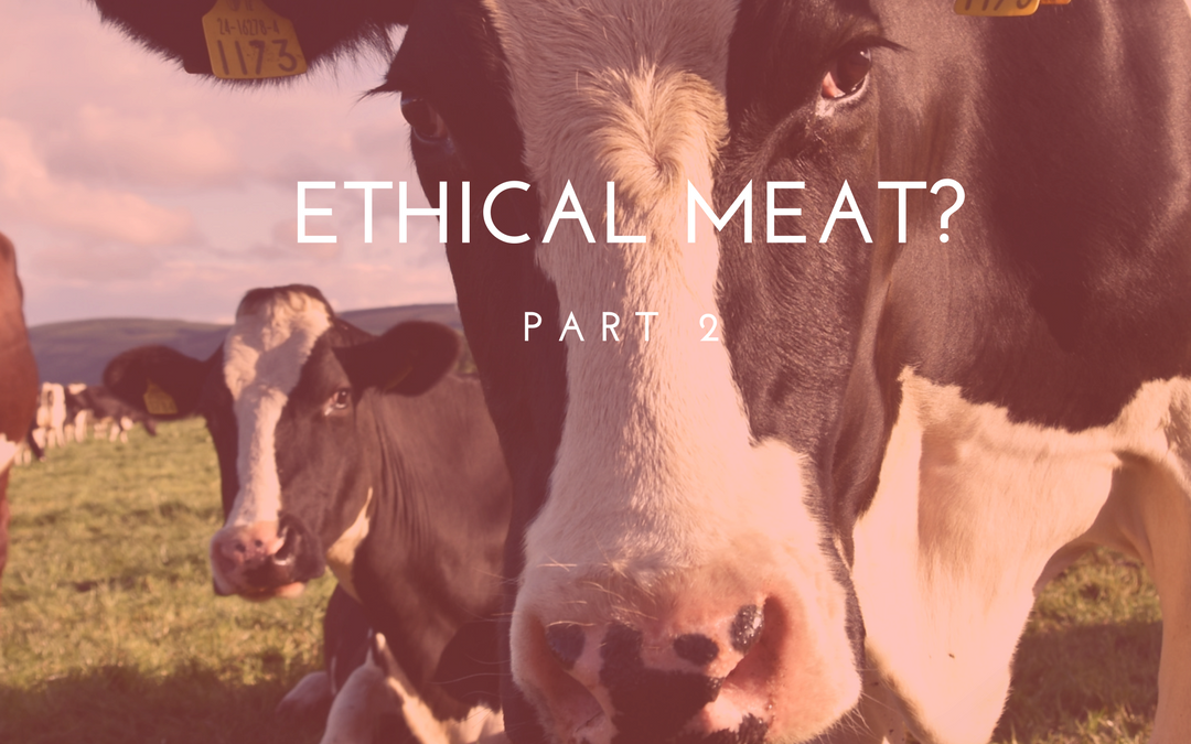 """Ethical Meat?"""